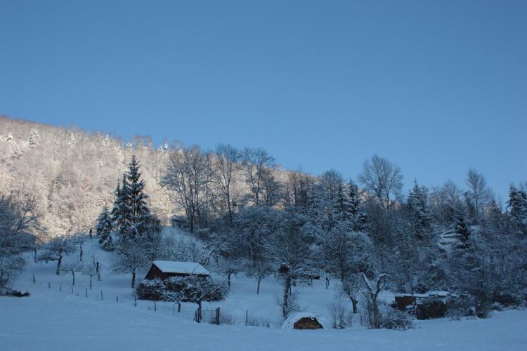 Foto Manfred Hagenmaier Copyright 2012